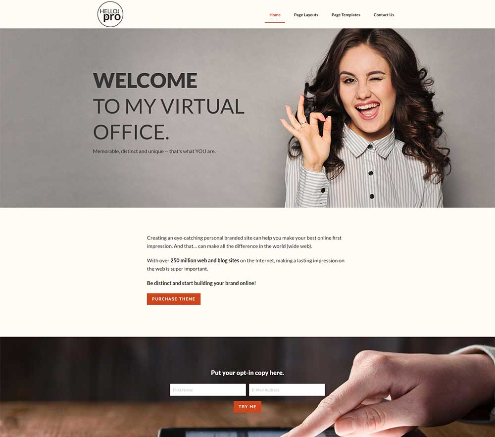 Hello Pro Theme one of the Affordable small business websites from Site2go