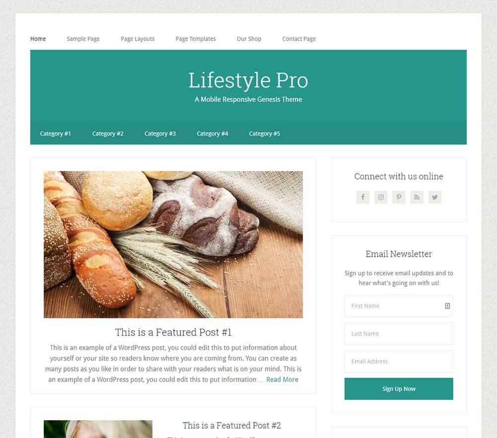 Lifestyle Pro Theme one of the Affordable small business websites from Site2go
