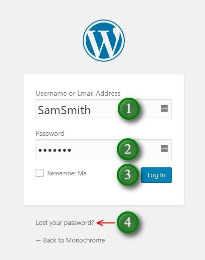 The WordPress log in screen